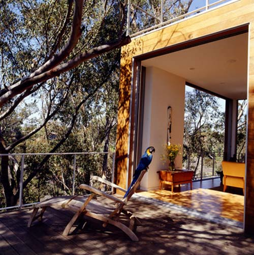 Tree House Design Luxury Wooden House Design by Safdie Rabines Architects 2 Tree House Design, Luxury Wooden House Design by Safdie Rabines Architects