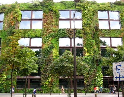 How to Reduce Heat During the Day in Safe Way | Green Wall Solution