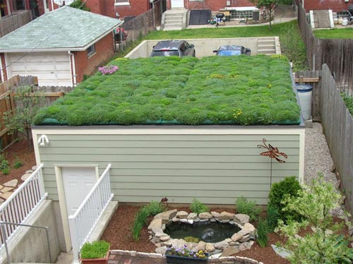 Roof Greening Home to Reduce Solar Heat